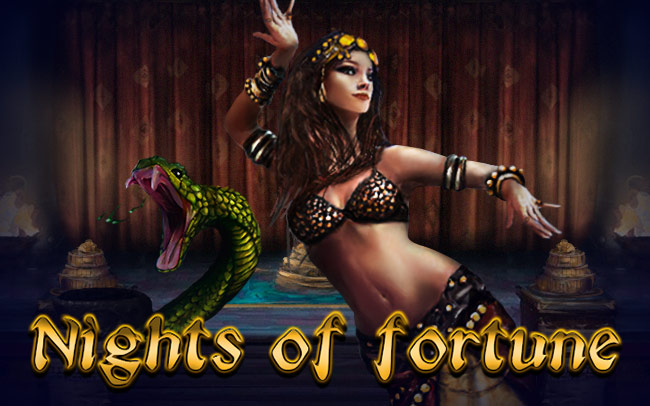 Nights of Fortune Game Logo